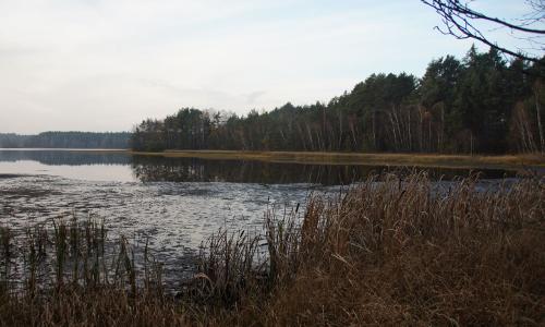 Neubäuer WEiher Beitrag Der herbstliche See