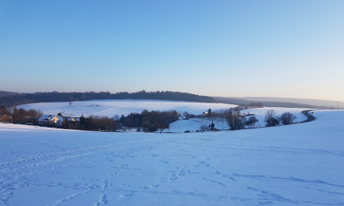 Eschenhahn im Winter Text Sonntag, 23.02.2020   Statt Fastnacht und Karneval: Eine besondere Wintererlebniswanderung