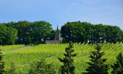 Frauenstein Goethestein beitrag Wanderung von Frauenstein nach Eltville