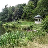 Waldsee_Beitrag_Foto Hilde Vonrhein