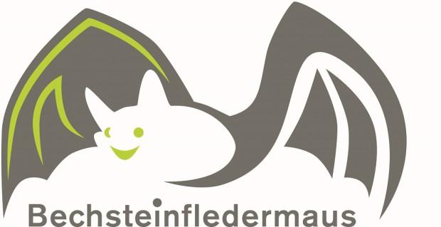 mittelgross Bechsteinfledermaus Logo CMYK 620x319 Einladung zur Sommernacht mit der Bechsteinfledermaus