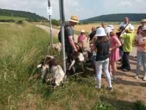 20180604 150913 300x225 Naturentdecker Klassenfahrt im Geo Naturpark Saale Unstrut Triasland