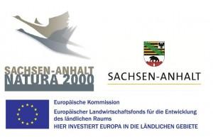 Förderung 300x193 Kleine Hufeisennasen im Freyburger Stadtpark