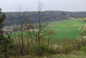 Frühlingswanderung über den Bockberg nach Wangen
