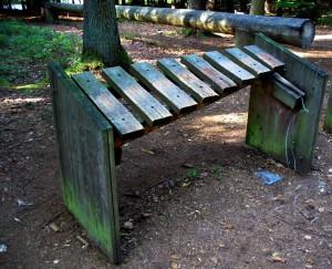 Musik des Holzes- (c)- VDNChristine R. Sigl- Bayerischer Wald