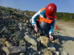 Praktikantin beim Steine kloppen