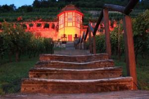 Weinbergshäuschen im Herzoglichen Weinberg in Freyburg