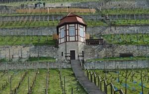 Weinbergshaus im Herzoglichen Weinberg 300x189 LEADER aktuell   LAG Naturpark Saale Unstrut Triasland