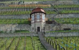 Weinbershaus im Herzoglichen Weinberg