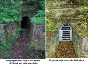 tür vergleich vorher nachher1 300x224 Kleine Hufeisennasen im Freyburger Stadtpark