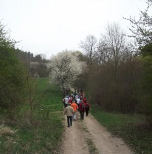 Wandergruppe mit Ziel Zscheiplitz