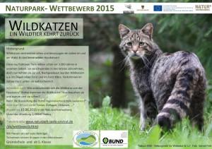 wettbewerb wildkatze plakat 300x211 Wildkatzen Ausstellung in Weißenfels