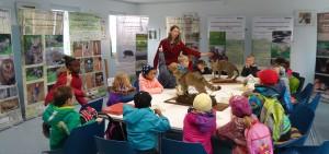 wildkatze ausstellung 1 300x141 Wildkatzen Ausstellung in Weißenfels