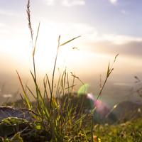 Herrliche Aussichten bieten sich dem Wanderer bei dieser geheimnisvollen Gipfelwanderung zum Bastenberg (Foto: pixabay)
