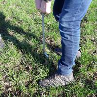 Schüler*innen und Studierende entnehmen Bodenproben auf landwirtschaftlichen Flächen zur Analyse des Phophatgehaltes (Foto: Naturpark Sauerland Rothaargebirge e.V.)