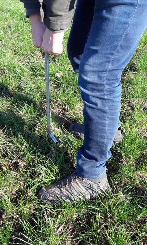 Bodenproben innen Schülerinnen und Studierende unterwegs zur Probenentnahme im Naturpark