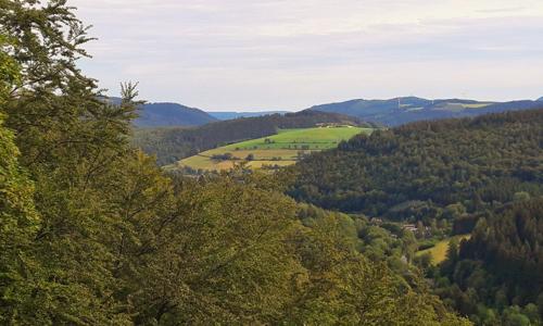Busch innen a 12. September: Bödefelder/Westernbödefelder Sehenswürdigkeiten und Aussichtsrunde