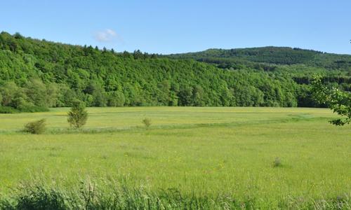 Das Juwel Wetterbachtal im südlichen Siegerland c Fasel Innen Auf Schatzsuche im Naturpark Sauerland Rothaargebirge