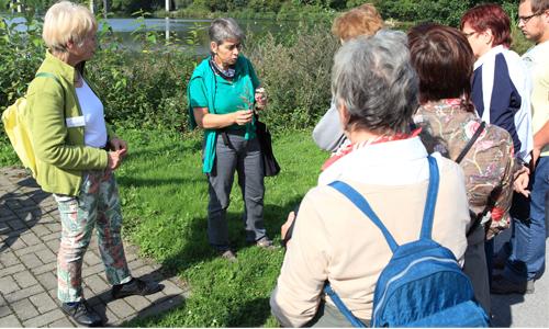 Für Birgit Stübe zertifizierte NaturLandschaftsführerin und Heilplanzenpädagogin geht die Liebe zu den Kräutern durch den Magen Mit den Naturparkführern die Natur erkunden