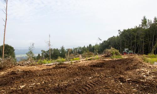 Fläche wird für die Pflanzung vorbereitet c Metten Teipel Seite Gemeinsames Aufforstungsprojekt mit der Firma Metten in Attendorn