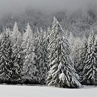 Foto_Übersicht_wandern
