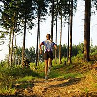 Foto_Übersicht_Trailrun