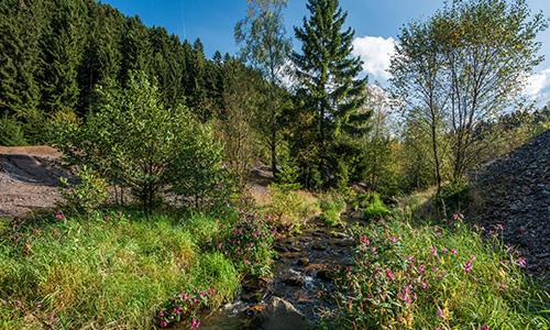 Foto Innenteil Buchhellertal1 02.09.2017: Wanderung durch das Buchhellertal