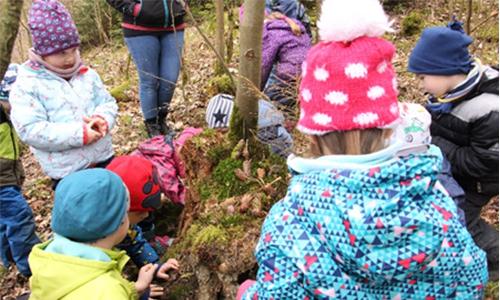 Foto Innenteil Entdeckertag2 Schulen und Kitas auf Entdeckungsreise im Naturpark Sauerland Rothaargebirge