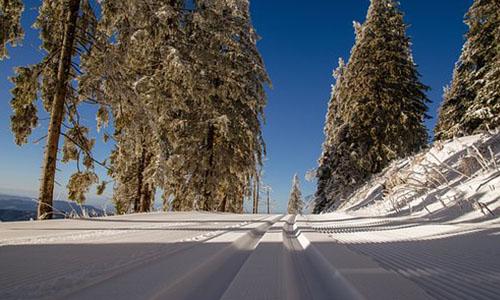 Foto Innenteil Leer Loipe 24.02.2018 Skiwanderung