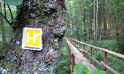 Foto Innenteil ranger 13. September: Rangerwanderung zum Entspannen in der Natur