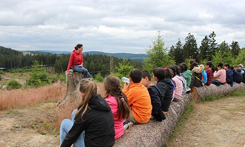 Foto Innenteil wisent Mit Schulklassen die Natur entdecken