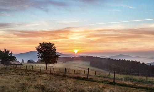Freise innen c Ferienwelt Winterberg 03. Mai: Der Mythen  und Sagenweg in Züschen