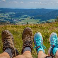 Anspruchsvoll, jedoch abwechslungsreich zugleich ist die Tageswanderung in Gernsdorf (Foto: analogicus | Pixabay)