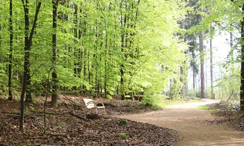 Impessionen Naturerlebnisweg innen Fernblick und Naturerlebnis für Alle   der besondere Naturerlebnispfad