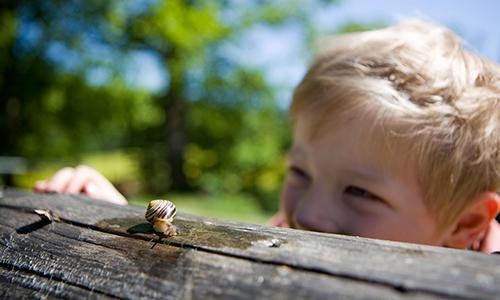 Kind mit Schnecke 15. und 16. April 2016: Im Zauberwald ist was los!