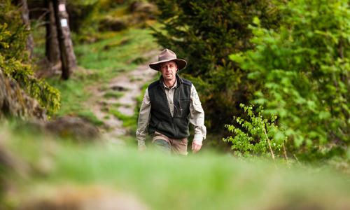 Mit dem Ranger den Wald erkunden innen 25.03.: Rangerwanderung Die vier Jahreszeiten