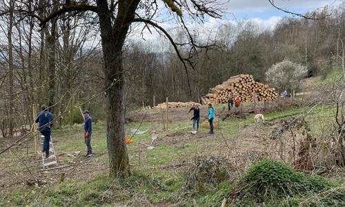 Neuenrade innen 1 Zukünftige Naturpark Schule pflanzt Bäume für Streuobstwiese