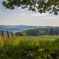 Tipps und Tricks zum tollen Waldlandschaftsfoto verrät Dir Naturparkführer Guido Bloch neben Infos zur Kultur und Natur auf dieser Exkursion (Foto: Simone Rein)