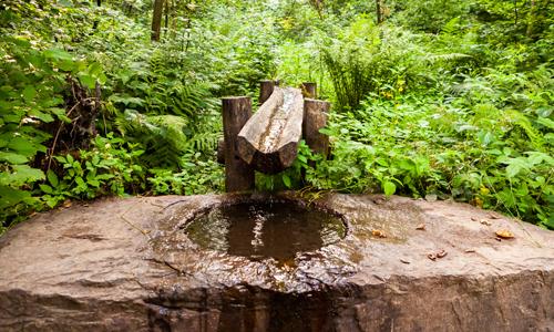 Quellgebiet innen Christina Ermert: Mein Ausflugstipp Radelnd den Naturpark erkunden auf dem Netpher Radring