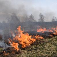 Feuer in der Landschaftspflege (Foto: UNB Siegen-Wittgenstein/M. Gertz)