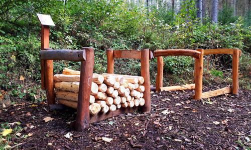 Waldaktivpfad innen Waldaktivpfad in Meinerzhagen Heed eröffnet