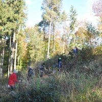 Landschaftspflegeaktion © Naturpark Schönbuch