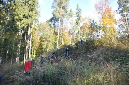 DSC 0091 452x300 Landschaftspflegeaktion Förderverein Naturpark Schönbuch