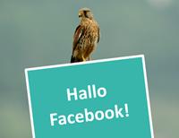 HalloFacebook_Beitragsbild