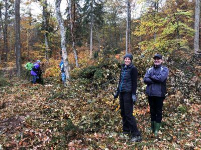 Landschaftspflegeaktion 500x300 Waldweide im Herrenberger Stadtwald