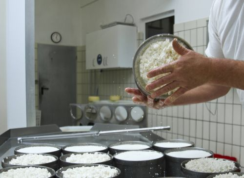 Produkt 2 April klein Ziegenfrischkäse aus Weil im Schönbuch