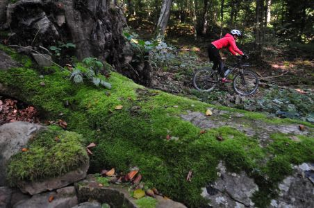 Rainer Schmid Olgahain bei Bebenhausen400x300 Mountainbiker treten jetzt legal ins Pedal