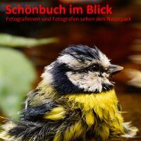 Plakat Ausstellung Schönbuchmuseum