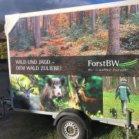 Wildwagen von ForstBW © Mathias Allgäuer