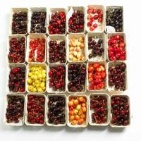 Rezept des Monats: Kirsch-Chutney